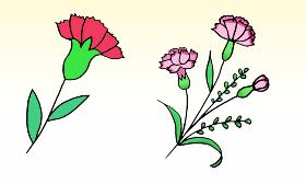 2021年三八妇女节礼物康乃馨简笔画